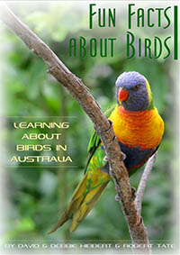 Book Fun facts about birds
