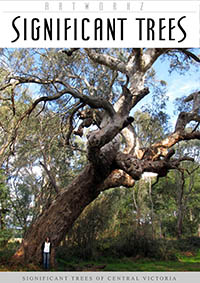 Significant Local Trees of Central Victoria